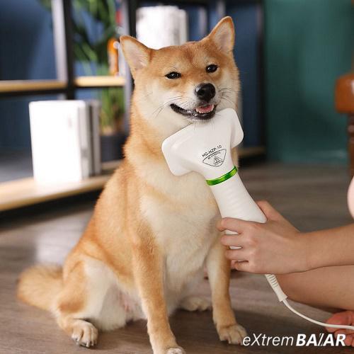 Pet Grooming Drayer kisállat szőr fésű és szárító