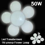 Virág alakú Led lámpa 50W / led transformers 5u plum flower lamp /