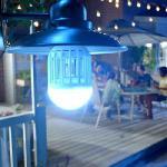 ZAPP LIGHT - rovarírtó lámpa - E27 szúnyogírtó LED lámpa UV-fénnyel / 60 W