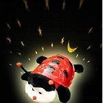 Világító zenélő katica ( CARTOON LADYBIRD NIGHT SKY CONSTELLATION )