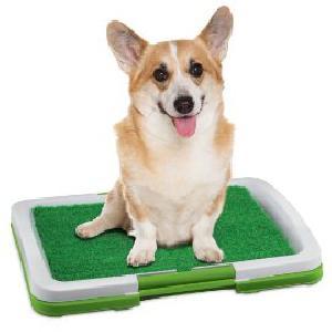 Kutyatoalett 3 rétegű / Potty Trainer /
