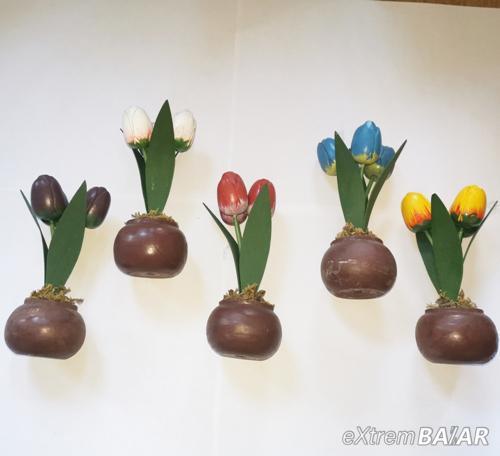 Cserepes fa tulipán
