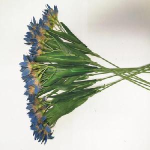Selyemvirág - 2